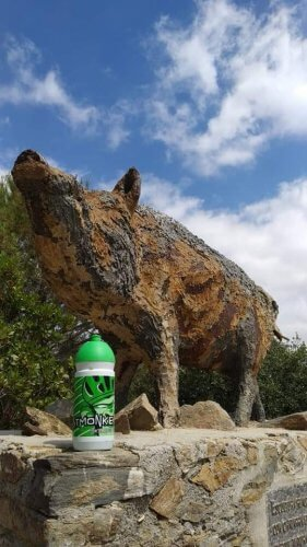 The famous wild boar statue